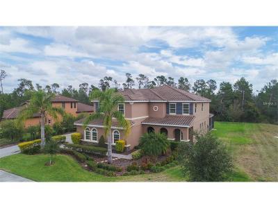Bradenton Single Family Home For Sale: 403 172nd Street E