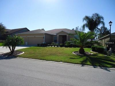 Lakeland Single Family Home For Sale: 3462 Summit Drive
