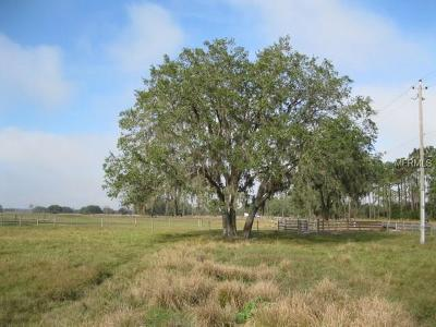 Myakka City Residential Lots & Land For Sale: 30810a Sr 70