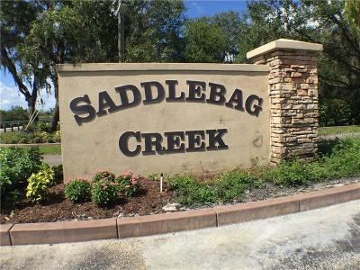 Myakka City Residential Lots & Land For Sale: 30224 Saddlebag Trail