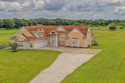 Bradenton Single Family Home For Sale: 5949 225th Street E
