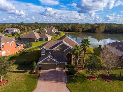 Ellenton Single Family Home For Sale: 6931 44th Court E