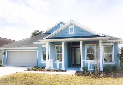 Weslely Chapel, Wesley Chapel Single Family Home For Sale: 4954 Diamonds Palm Loop