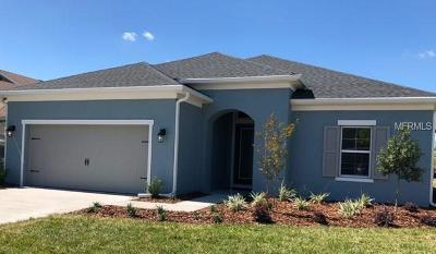 Weslely Chapel, Wesley Chapel Single Family Home For Sale: 4755 Pointe O Woods Drive
