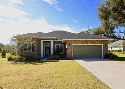 Lady Lake Single Family Home For Sale: 506 Canopy Lane