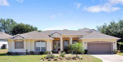 Clermont Single Family Home For Sale: 11418 Crystal View Court