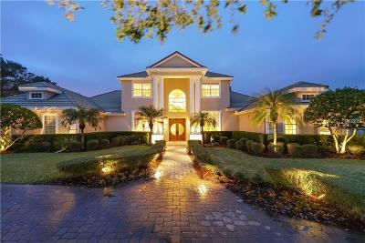 Single Family Home For Sale: 7698 Albert Tillinghast Drive