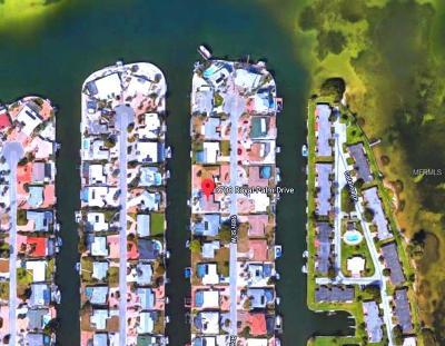 Bradenton Single Family Home For Sale: 3708 Royal Palm Drive