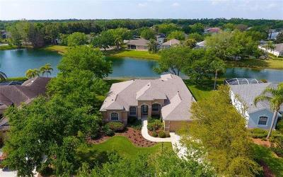 Lakewood Ranch Single Family Home For Sale: 12001 Summer Meadow Drive