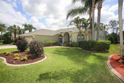 Bradenton Single Family Home For Sale: 6614 Peach Tree Creek Road