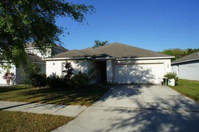 Hernando County, Hillsborough County, Pasco County, Pinellas County Single Family Home For Sale: 1408 Alhambra Crest Drive