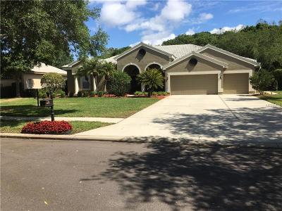 Oldsmar Single Family Home For Sale: 5087 Cross Pointe Drive