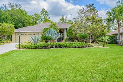 Osprey Single Family Home For Sale: 595 Pine Ranch East Road