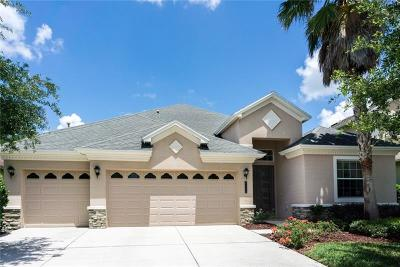 Tampa Single Family Home For Sale: 8110 Hampton Glen Drive
