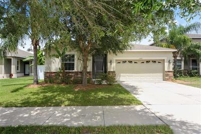 Riverview Single Family Home For Sale: 11208 Flora Springs Drive