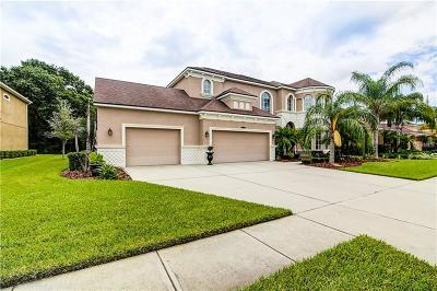 Wesley Chapel Single Family Home For Sale: 3138 Watermark Drive