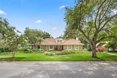 Palm Harbor Single Family Home For Sale: 1536 Willow Brook Drive