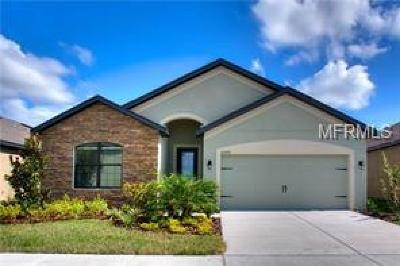 Hernando County, Hillsborough County, Pasco County, Pinellas County Single Family Home For Sale: 11615 Winterset Cove Drive