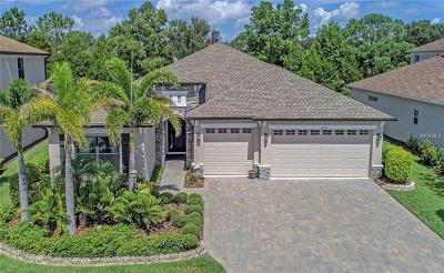 Lakewood Ranch, Lakewood Rch, Lakewood Rn Single Family Home For Sale: 14290 Sundial Place