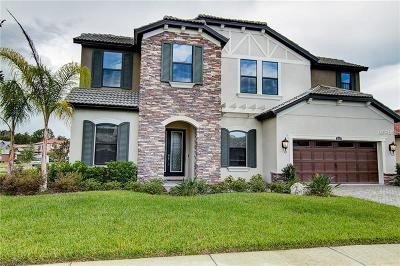 Tampa Single Family Home For Sale: 5115 Lakecastle Drive