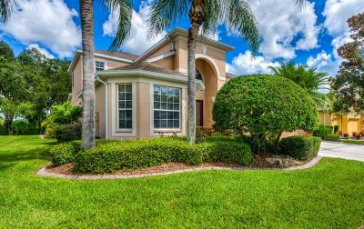 Sarasota Single Family Home For Sale: 7915 Kavanagh Court