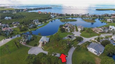 Tarpon Springs Residential Lots & Land For Sale: 0 Otter Court