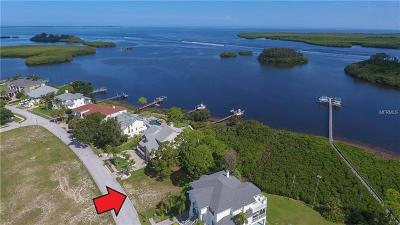 Tarpon Springs Residential Lots & Land For Sale: 0 N Pointe Alexis Drive