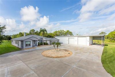 Saint Cloud FL Single Family Home For Sale: $925,000