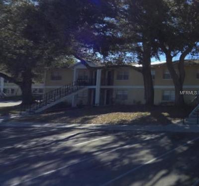 Tampa Condo For Sale: 14590 Seaford Circle #102
