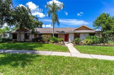 Valrico Single Family Home For Sale: 2701 Fairway View Drive