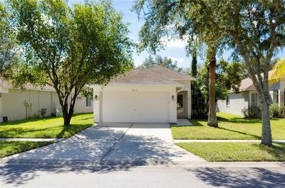 Tampa Single Family Home For Sale: 10433 Isleworth Avenue