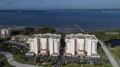 Palmetto Condo For Sale: 2825 Terra Ceia Bay Boulevard #1705