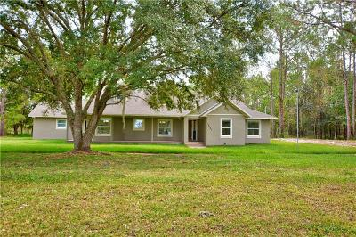 Lakeland Single Family Home For Sale: 14207 Rockridge Road