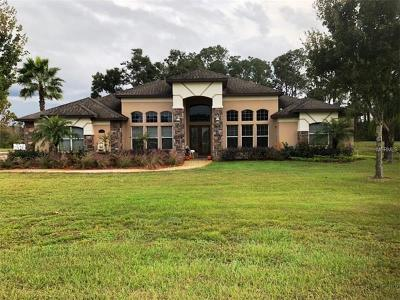 Clermont FL Single Family Home For Sale: $609,000