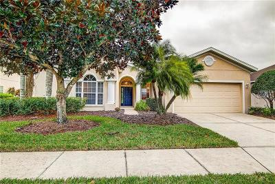 Sarasota Single Family Home For Sale: 7817 Castleisland Drive