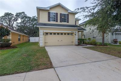 Ruskin, Riverview Single Family Home For Sale: 11104 Goldenrod Fern Drive