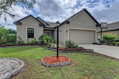 Palmetto Single Family Home For Sale: 1011 22nd Street E