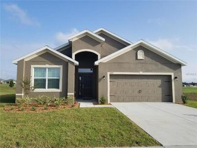 Brooksville Single Family Home For Sale: 6747 Wirevine Drive