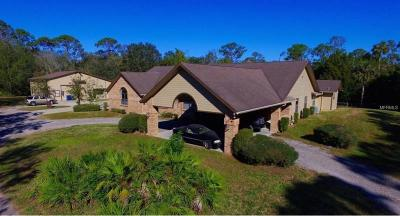 Volusia County Single Family Home For Sale: 1215 Williams Road