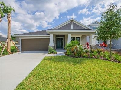 Tampa Single Family Home For Sale: 8026 Marbella Creek Avenue