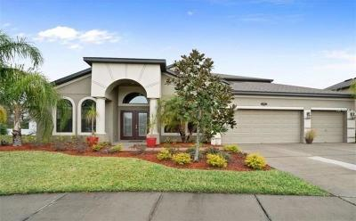 Pinellas Park Single Family Home For Sale: 5865 95th Avenue N