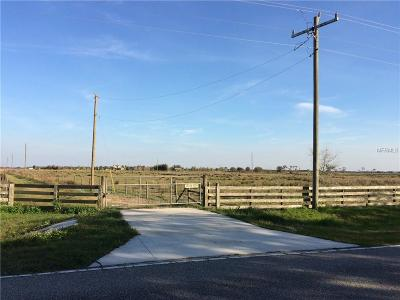 Myakka City Residential Lots & Land For Sale: 13645 Mj Road