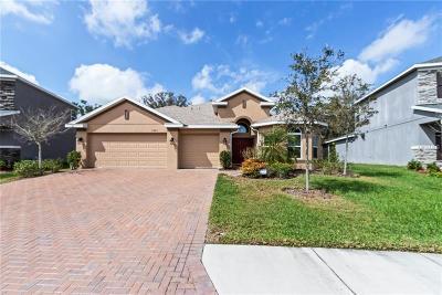 Ellenton Single Family Home For Sale: 5005 65th Terrace E