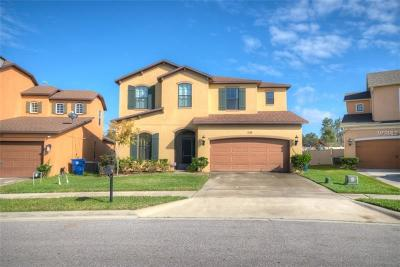 Minneola Single Family Home For Sale: 1114 Woods Landing Drive