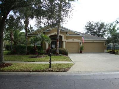 Hernando County, Hillsborough County, Pasco County, Pinellas County Single Family Home For Sale: 19041 Fern Meadow Loop