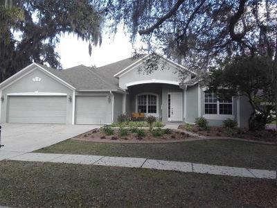 Seffner Single Family Home For Sale: 911 Hickory Fork Drive
