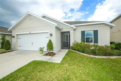 Bradenton Single Family Home For Sale: 15815 High Bell Place