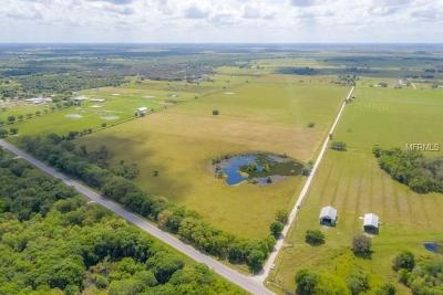 Myakka City Residential Lots & Land For Sale: 10501 Robinson Road