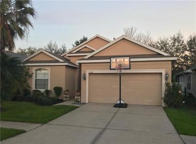 Riverview Single Family Home For Sale: 13704 Sigler Street