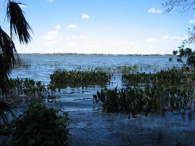 Residential Lots & Land For Sale: Deer Island Road